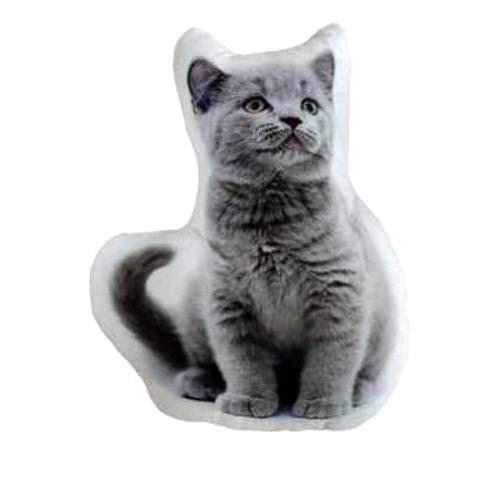 Cojín gato British con relleno en Decora-Zone