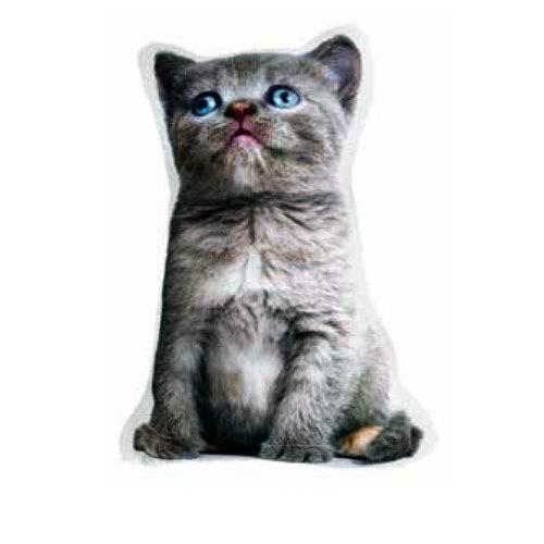 Cojín gato pequeño British con relleno en Decora-Zone